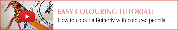 How to Colour a Butterfly using coloured pencils by Michelle Tracey